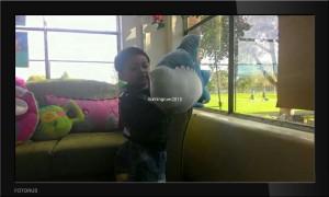 Moomm.... it's shark